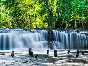 Фотография Тропики Парки Водопады Деревья Kulen National Park Cambodia Природа