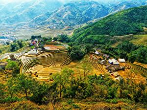 Фото Вьетнам Гора Поля Дома Сверху Природа
