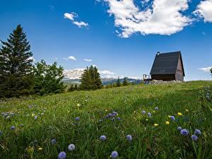 Обои для рабочего стола Горы Лето Франция Луга Альп Vercors Massif Природа