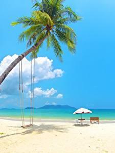 Фотографии Тропический Море Пальмы Качели Пляжи