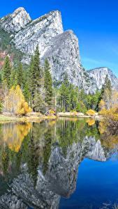 Фотография Штаты Парк Горы Озеро Осень Пейзаж Йосемити Деревья