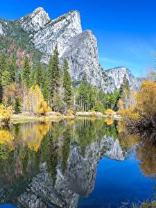 Фотография Америка Парк Горы Озеро Осень Пейзаж Йосемити Деревья