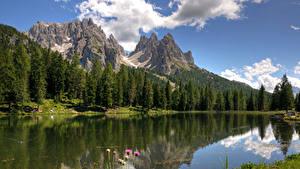 Фотография Италия Горы Озеро Леса Lake Misurina Природа