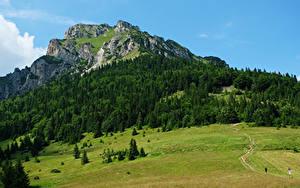 Фото Словакия Горы Леса Луга Tatras