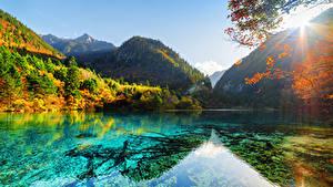 Фотографии Китай Цзючжайгоу парк Парки Озеро Гора Осенние Лес Пейзаж