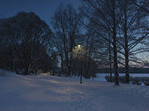 Фото Финляндия Зимние Вечер Снеге Уличные фонари Дерева Tampere