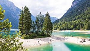 Обои Италия Гора Лес Озеро Берег Ели Predil Lake Природа