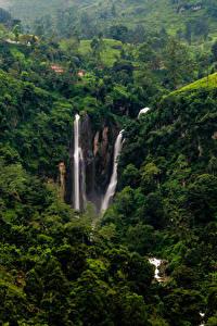 Фотография Шри-Ланка Водопады Утес Puna falls