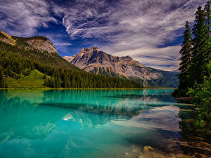 Фото Канада Парки Озеро Горы Леса Облако Emerald Lake Yoho National Park Природа