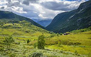 Фотография Норвегия Горы Луга Облачно Tindevegen Природа