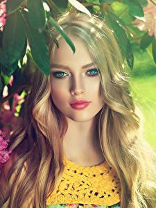 Фотографии Рододендрон Блондинка Лицо Смотрит Красивые Девушки
