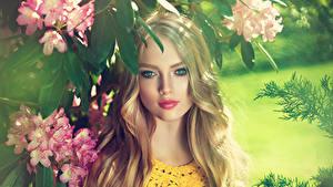 Фотографии Рододендрон Блондинка Лицо Смотрит Красивые