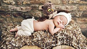 Обои для рабочего стола Игрушки Совы Младенцы Спящий Дети