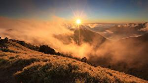 Фотография Рассветы и закаты Гора Пейзаж Траве Тумане Солнца Природа
