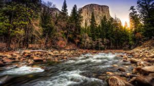 Картинки Штаты Леса Реки Камень Пейзаж Йосемити Калифорния Утес Ручей