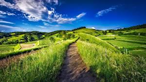 Фотография Поля Германия Пейзаж Небо Траве Тропа Природа
