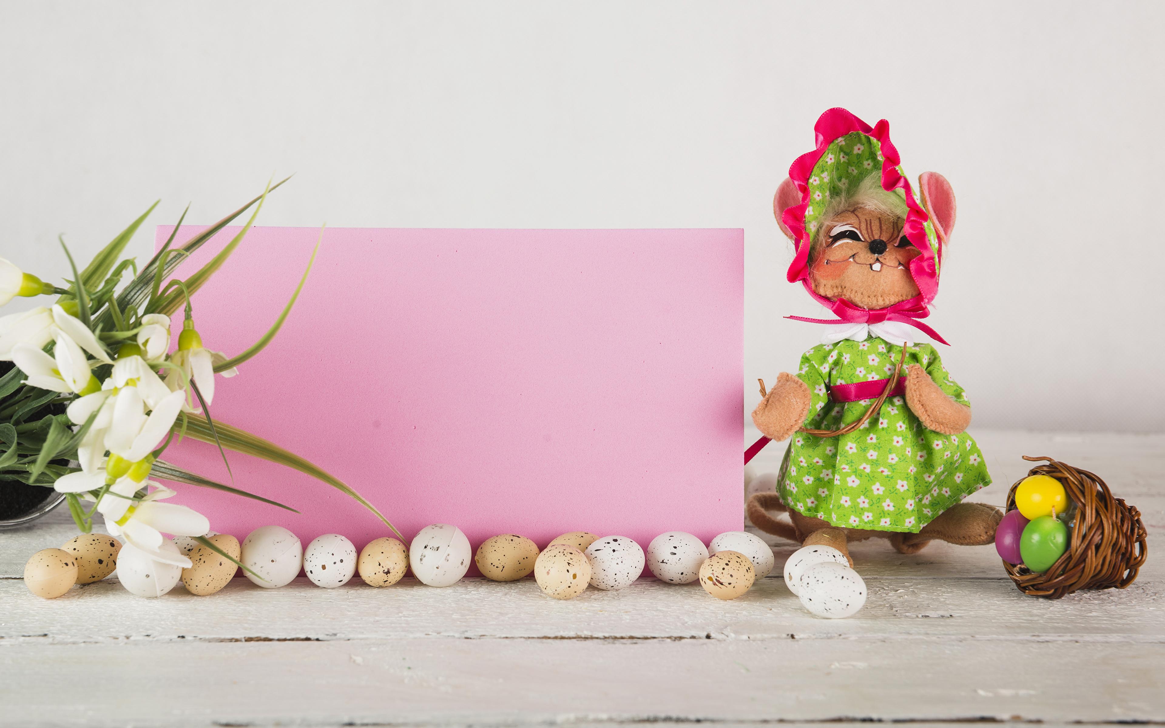 Фотографии Пасха Кролики Яйца Галантус Корзинка Шаблон поздравительной открытки Праздники 3840x2400 кролик яиц яйцо яйцами корзины Корзина Подснежники