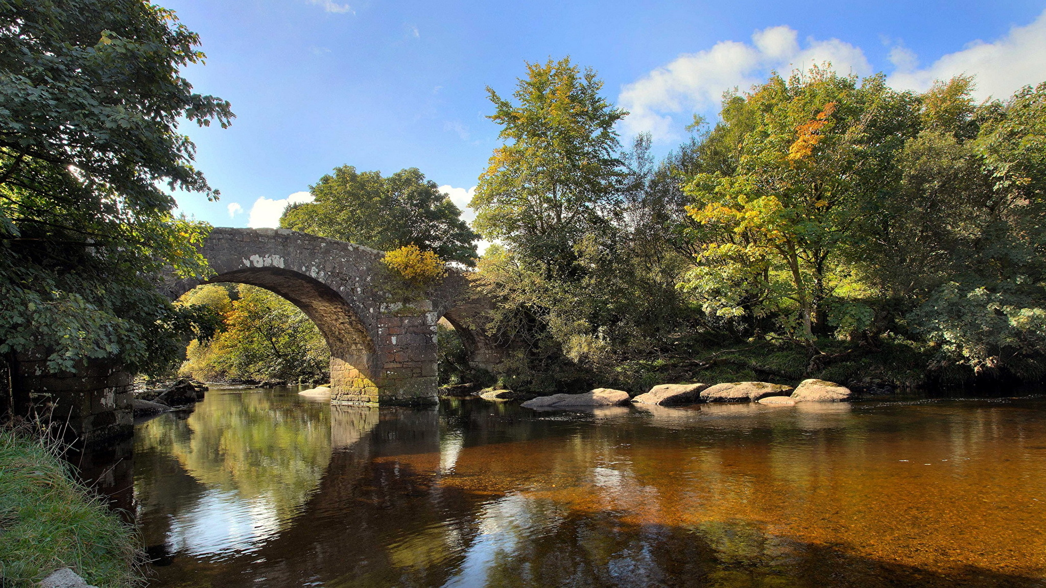 природа деревья река мост без регистрации