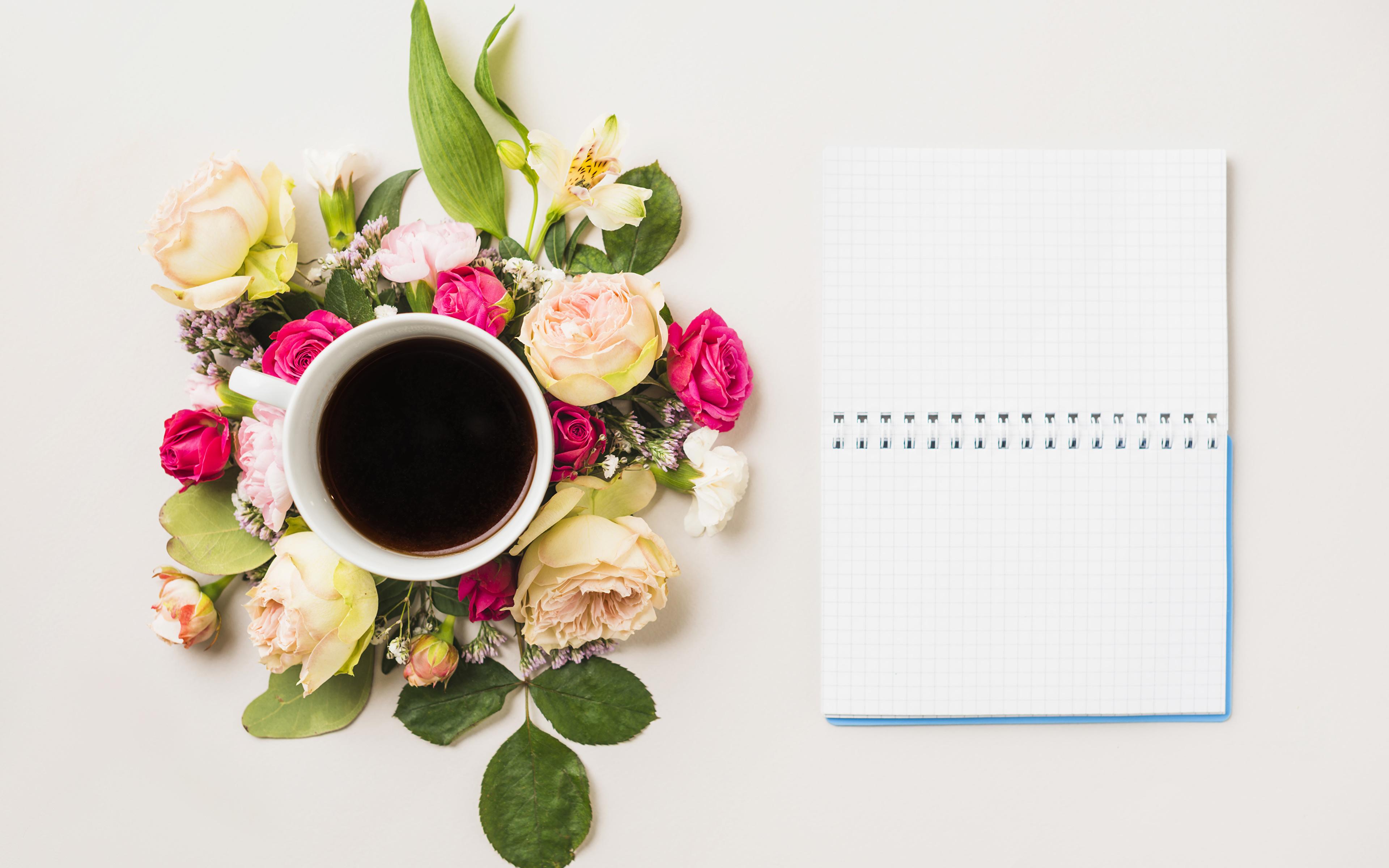 Картинки Блокнот Розы Кофе Цветы Чашка Продукты питания Шаблон поздравительной открытки Натюрморт Цветной фон 3840x2400 роза цветок Еда Пища чашке