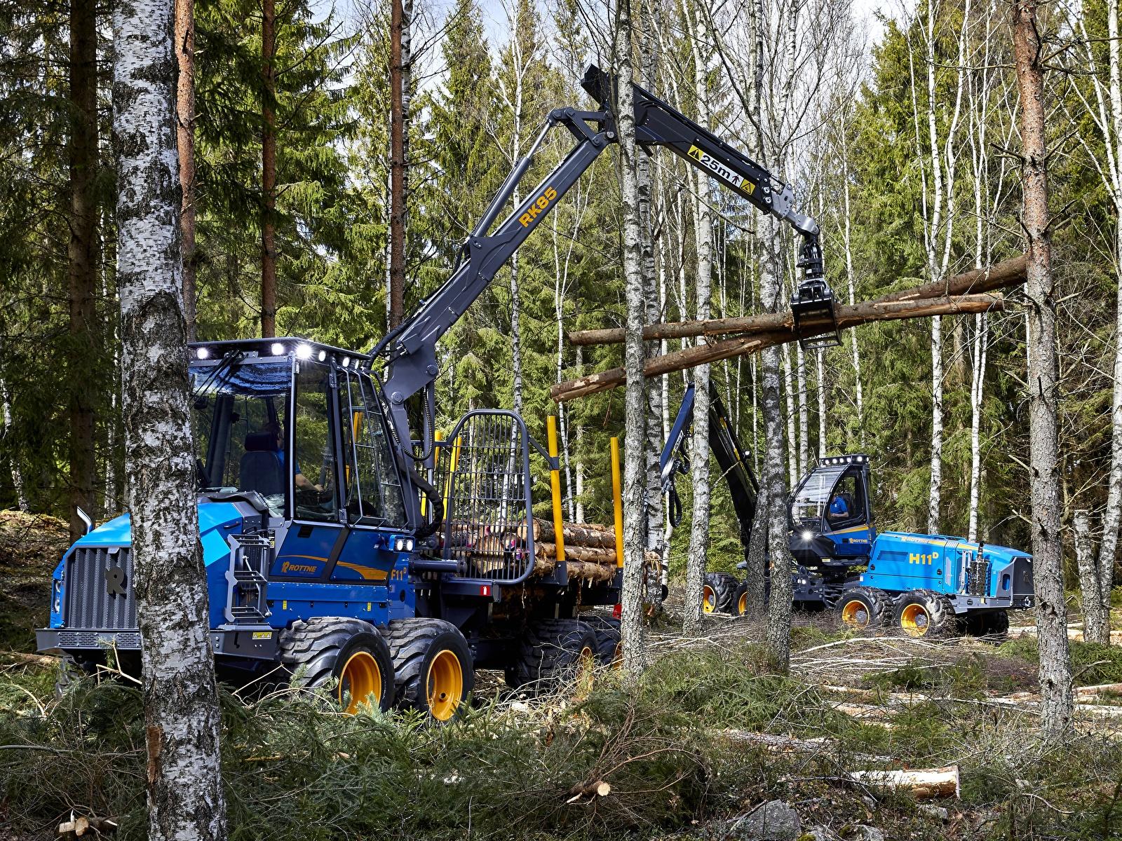 Обои для рабочего стола Форвардер Rottne F11D, Rottne H11D 8WD Леса 1600x1200 лес
