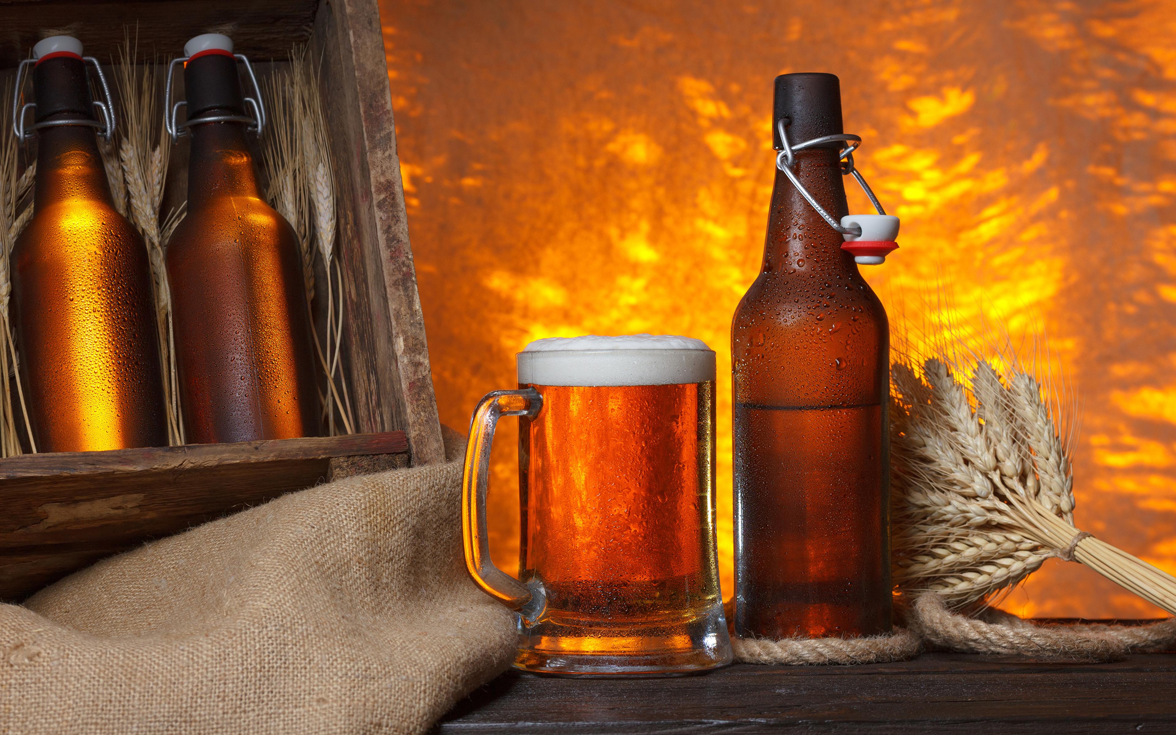 разливное крафтовое пиво оптом от производителя