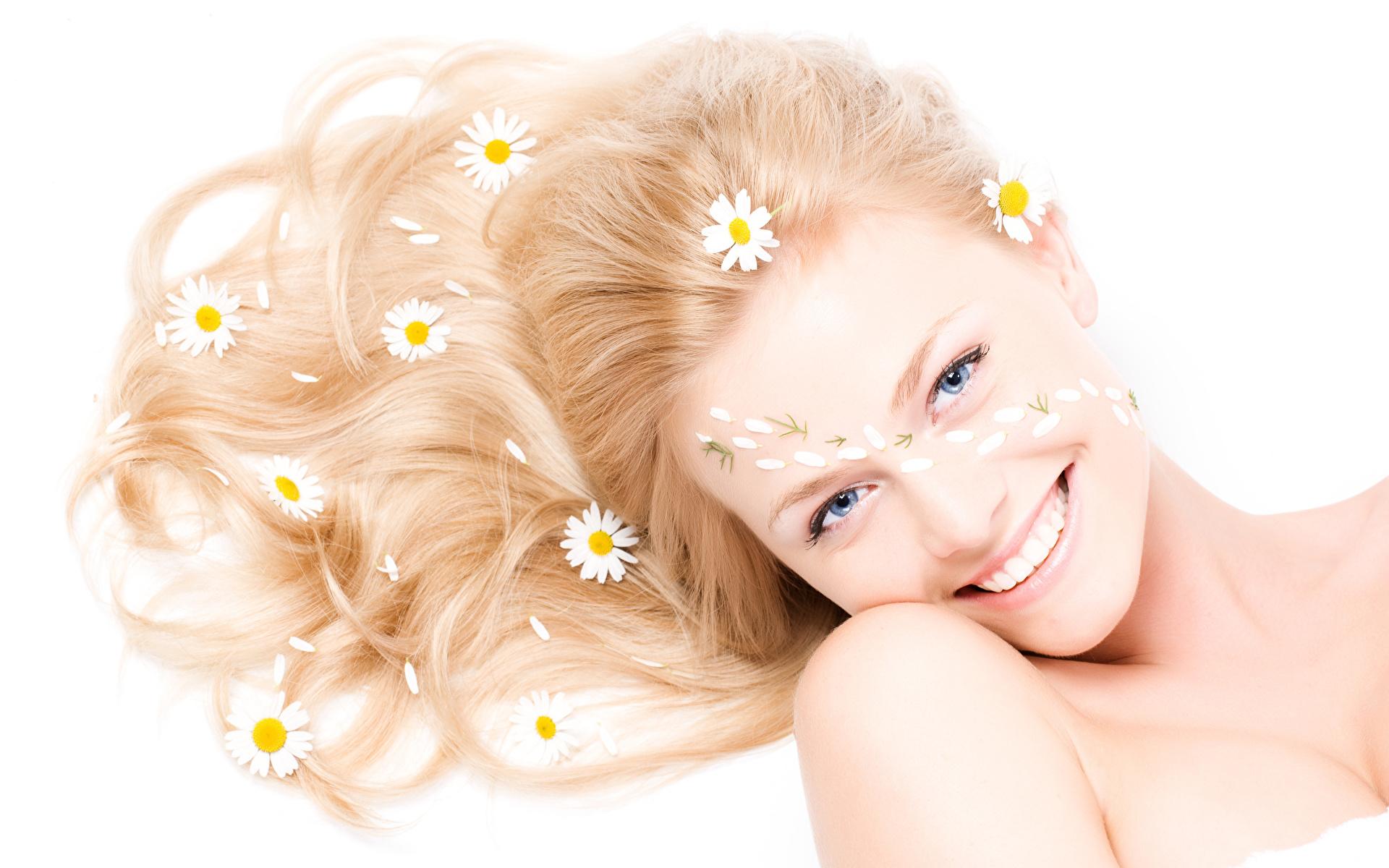 Картинки Улыбка Волосы Девушки ромашка Взгляд Белый фон 1920x1200 улыбается волос девушка молодая женщина молодые женщины Ромашки смотрит смотрят белом фоне белым фоном