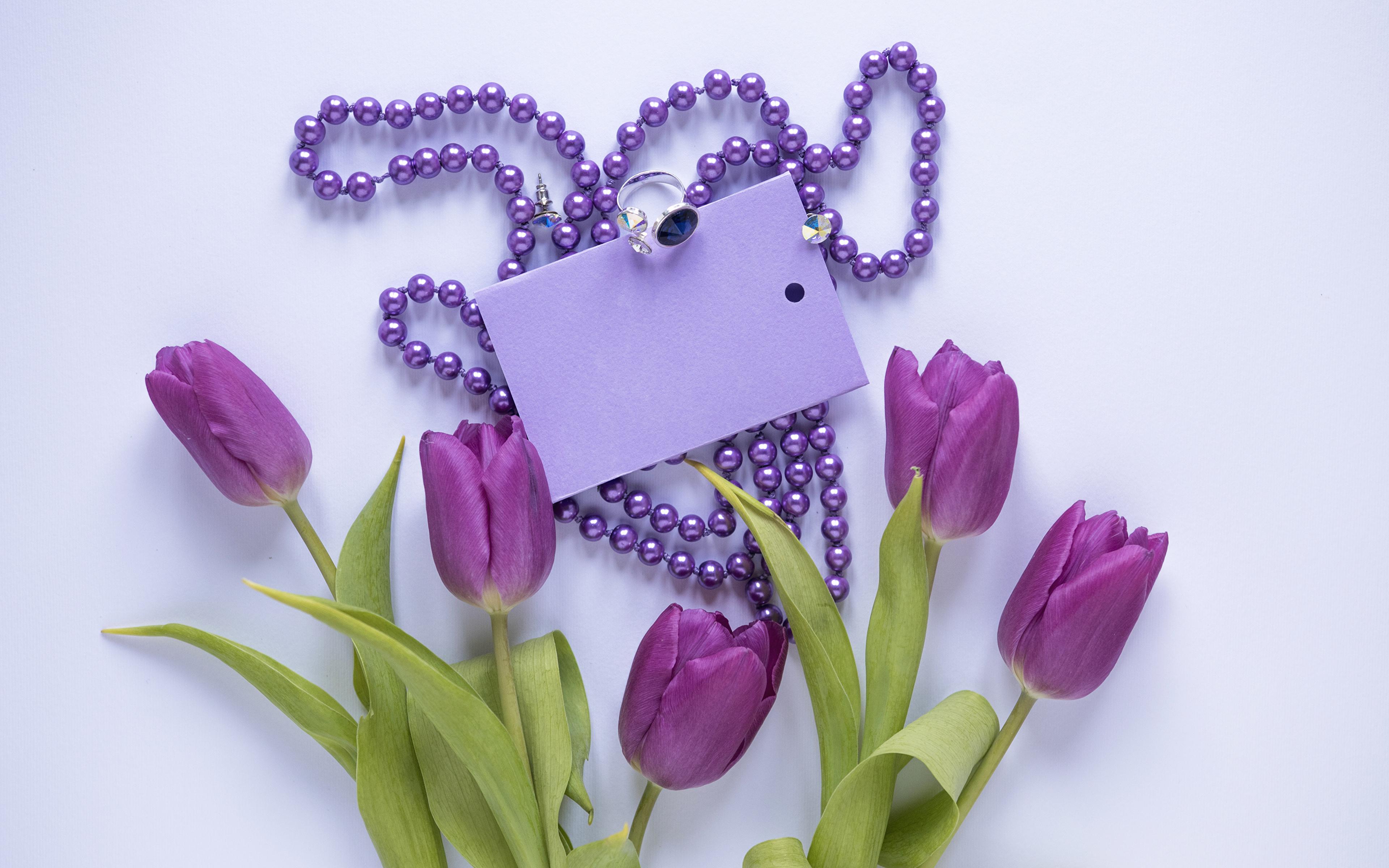 Обои для рабочего стола Тюльпаны Фиолетовый Цветы ювелирное кольцо Шаблон поздравительной открытки Украшения Цветной фон 3840x2400 тюльпан фиолетовых фиолетовая фиолетовые цветок Кольцо кольца кольца