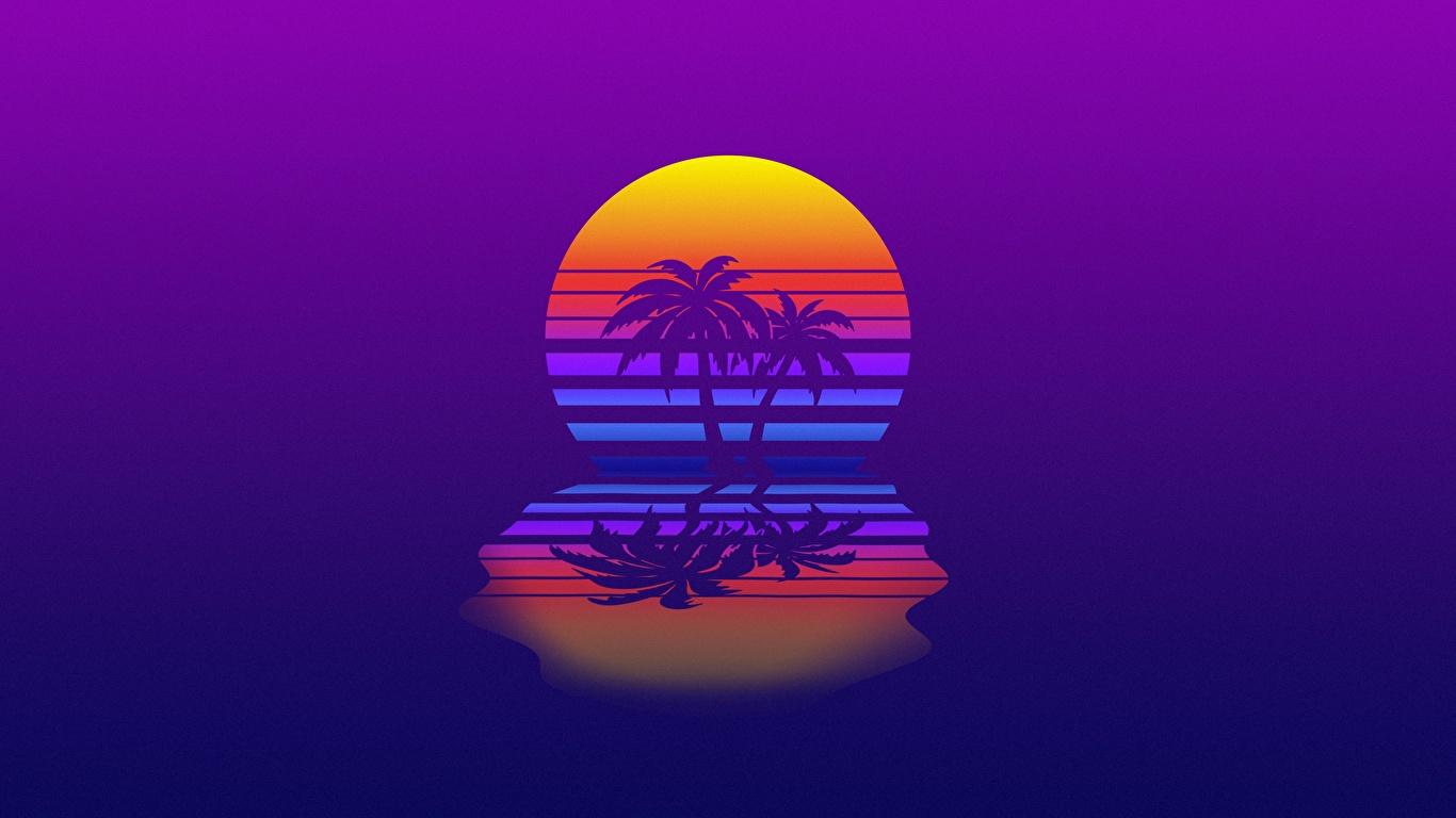 Картинка Ретровейв солнца Природа пальм Отражение 1366x768 Синтвейв Солнце пальма Пальмы отражении отражается