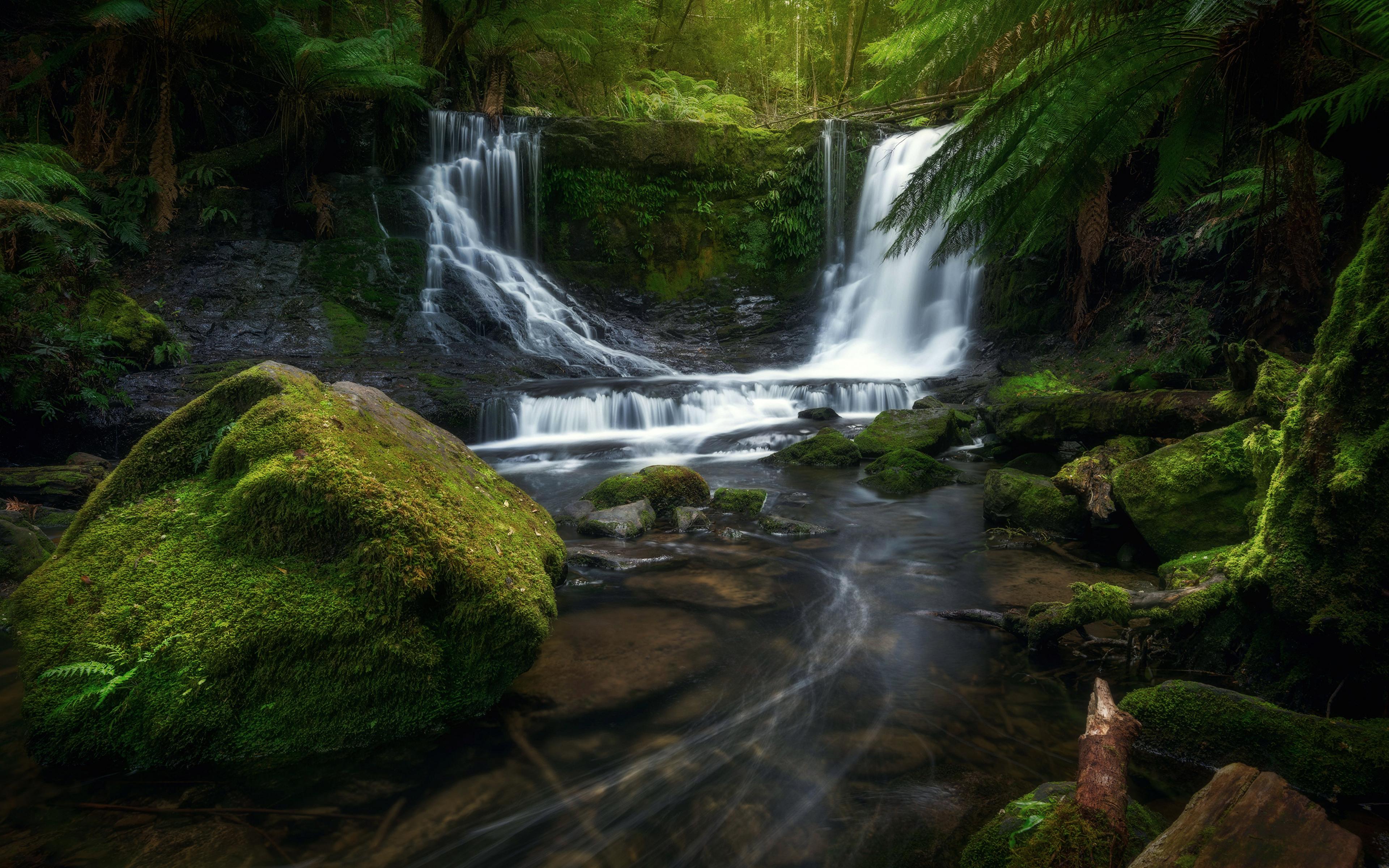 Обои для рабочего стола Австралия Mount Field National Park Природа Водопады Парки Мох Камень 3840x2400 парк мха мхом Камни
