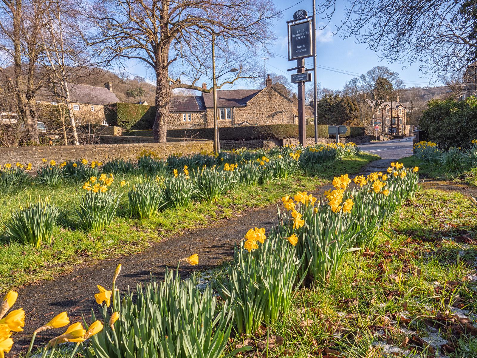 Картинки Великобритания Baslow Derbyshire весенние улице Нарциссы город Здания 1600x1200 Весна улиц Улица Дома Города
