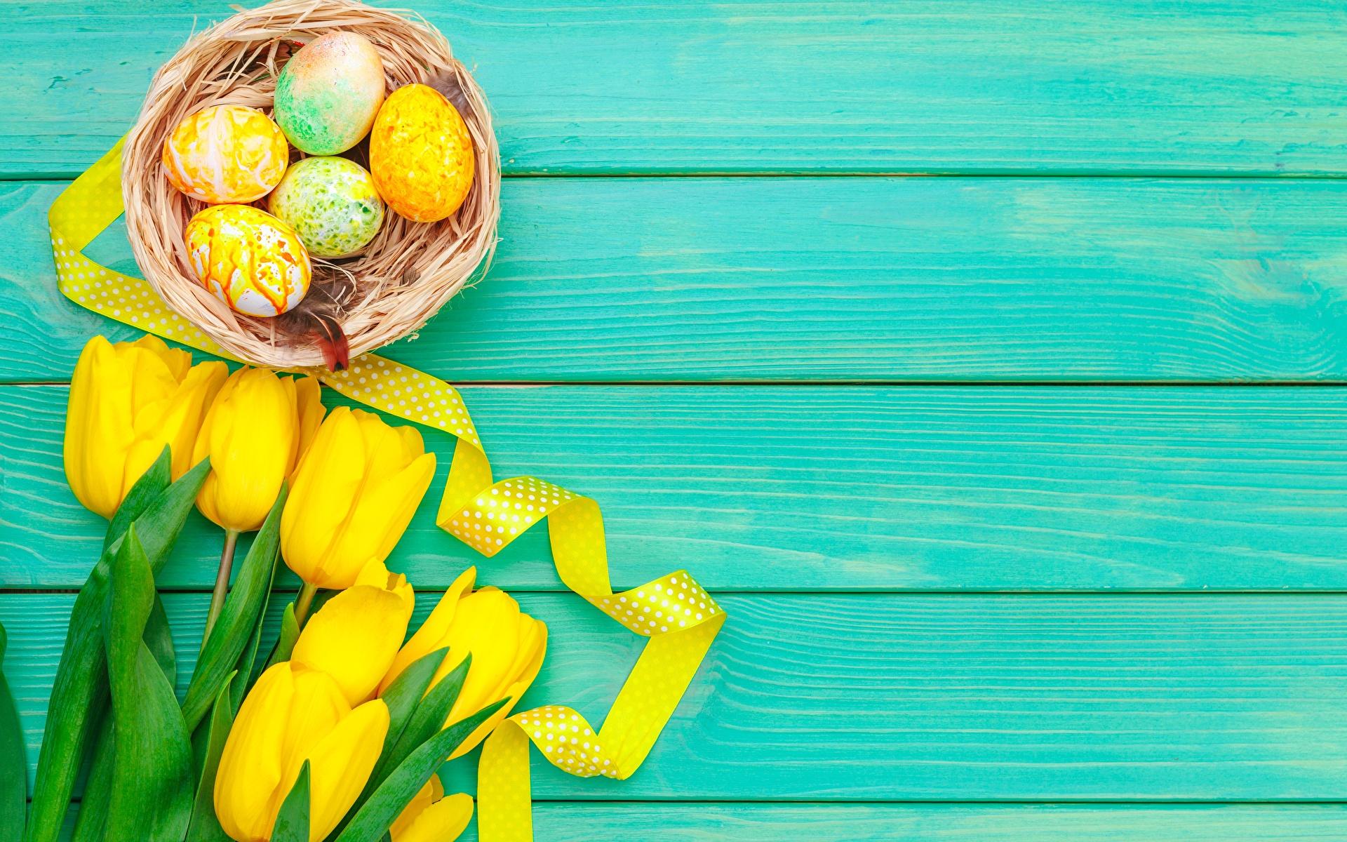 Фотографии Пасха Яйца желтые Гнездо Тюльпаны цветок Шаблон поздравительной открытки Доски 1920x1200 яиц яйцо яйцами гнезда гнезде желтая Желтый желтых тюльпан Цветы