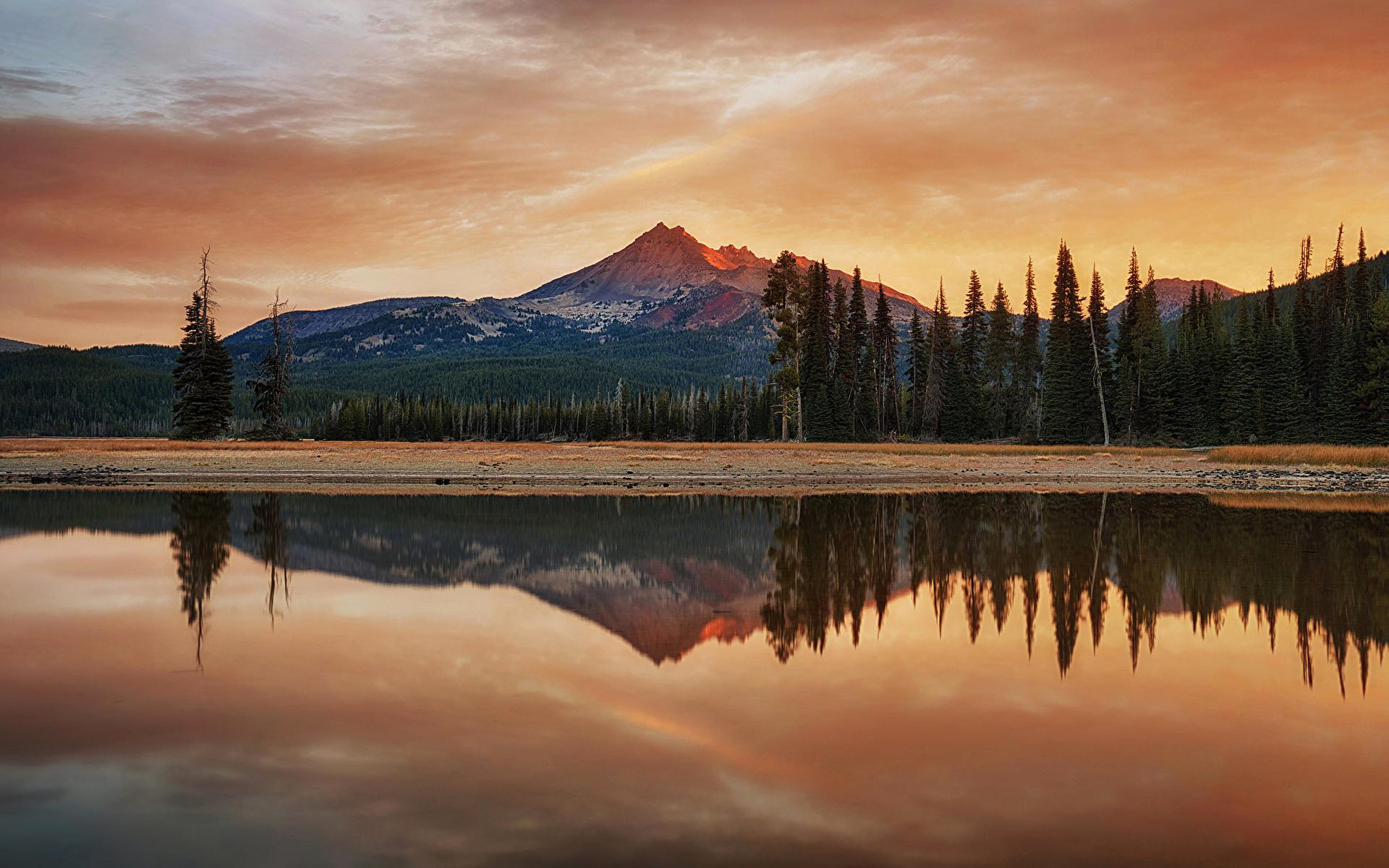 природа деревья Озеро отражение горы облака без смс