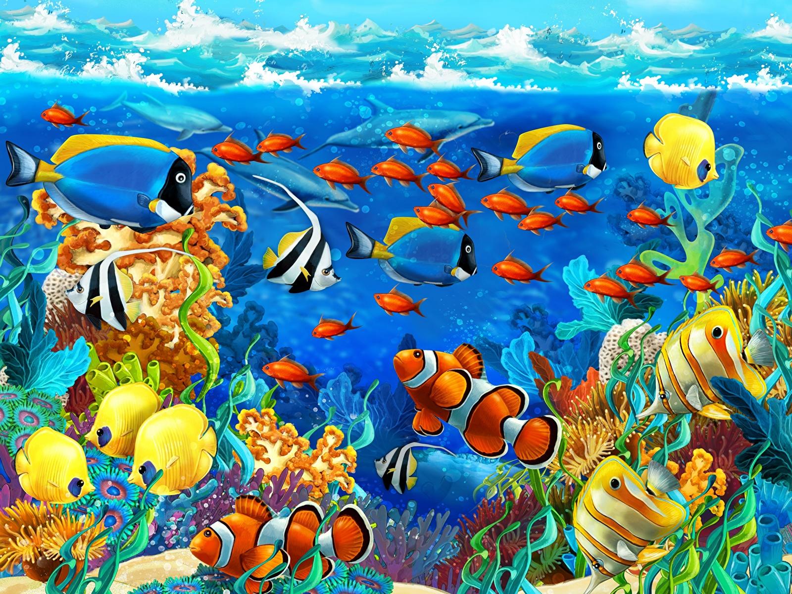 Обои для рабочего стола Рыбы Подводный мир Животные 1600x1200 животное
