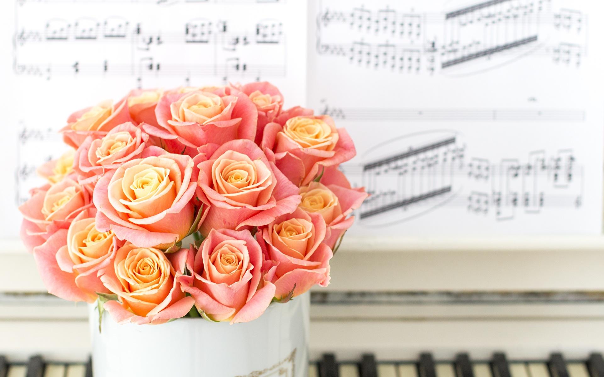 Фотография Ноты Букеты роза розовые Цветы 1920x1200 букет Розы розовых розовая Розовый цветок