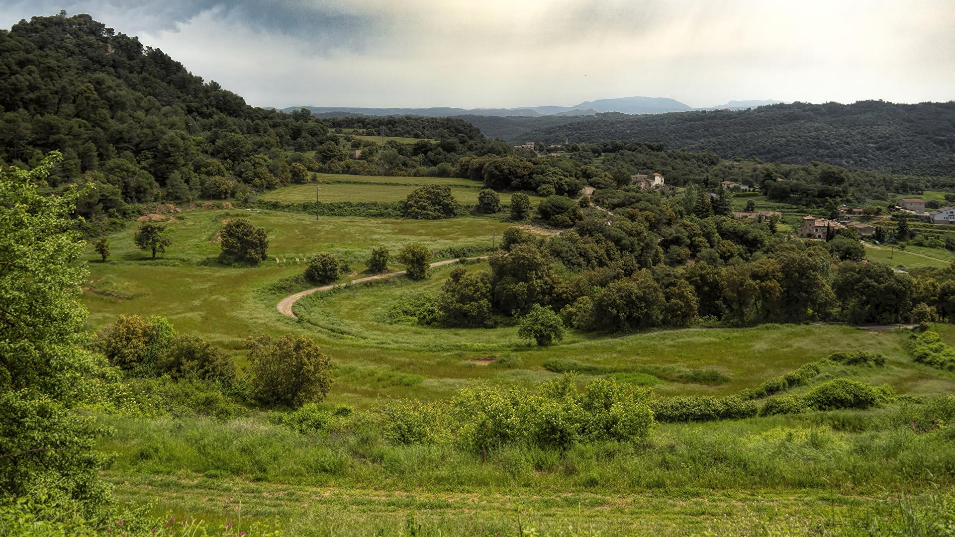 Фотография Испания Granera Catalonia Природа Леса Луга Трава Здания 1920x1080 лес траве Дома