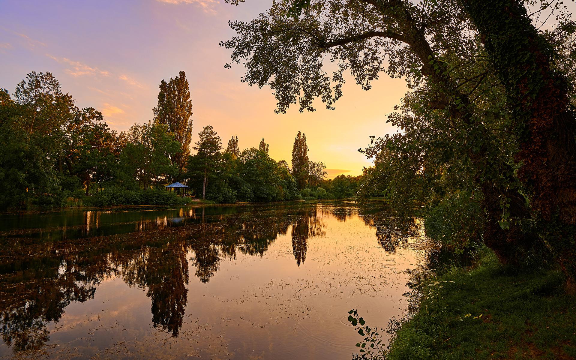 Картинка Вена Австрия Wasserpark Floridsdorf Природа Парки рассвет и закат река дерево 1920x1200 парк Рассветы и закаты Реки речка дерева Деревья деревьев