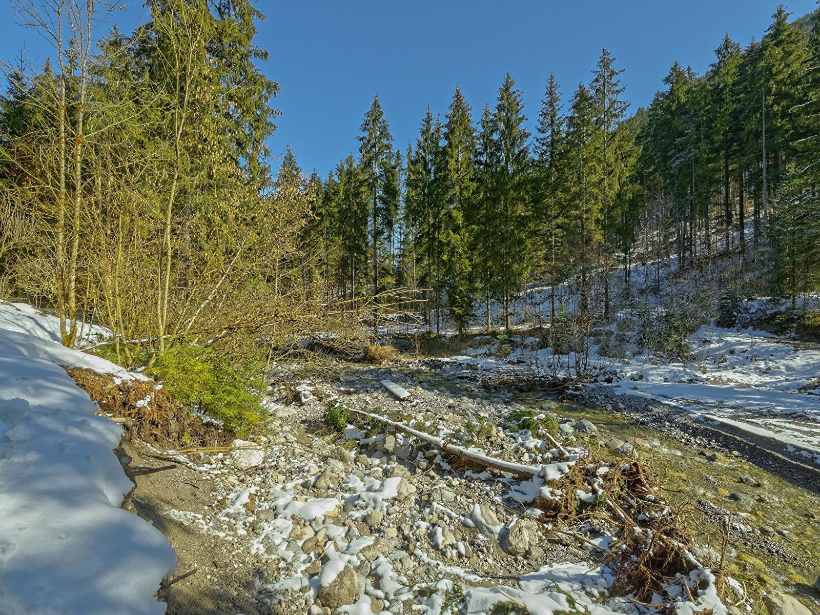 Фото Альпы Австрия Tyrol ели Зима Природа Леса снега 1600x1200 альп Ель зимние лес Снег снеге снегу