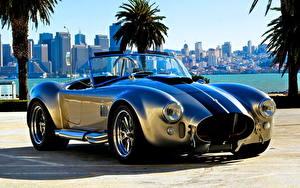 Фотографии Ретро Родстер Shelby Cobra  Roadster(AC Cars)