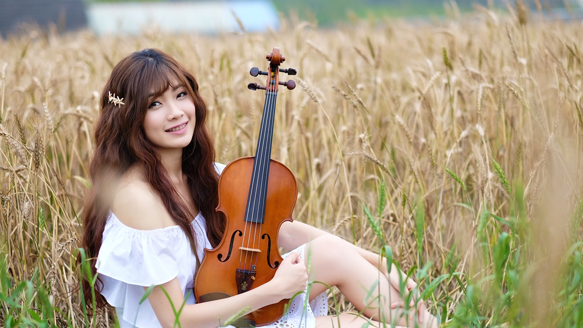 Фото Скрипки шатенки Улыбка Размытый фон молодая женщина Поля Азиаты Сидит смотрят 1920x1080 скрипка Шатенка улыбается боке девушка Девушки молодые женщины азиатки азиатка сидя сидящие Взгляд смотрит