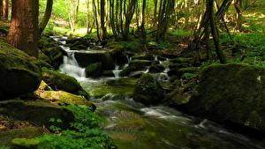 Фотография Водопады Ручей Steinbachklamm Austria Природа