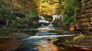 Картинка Водопады Ручей Природа