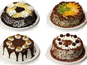 Фотографии Торты Шоколад Белый фон