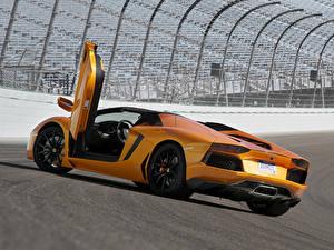 Фотография Ламборгини Оранжевый Люксовые Родстер Aventador LP700-4 Roadster