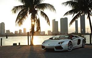 Картинки Lamborghini Белые Кабриолета Пальмы Дорогие Родстер 2012 Aventador LP700-4 roadster Автомобили Города
