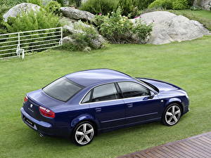 Обои Seat Синяя Газон 2009 Exeo авто