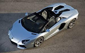 Обои Lamborghini Серебристый Кабриолет Сверху Роскошные Родстер 2012 Aventador LP700-4 roadster Автомобили