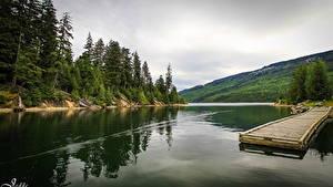 Картинка Речка Канада Леса Пристань Природа