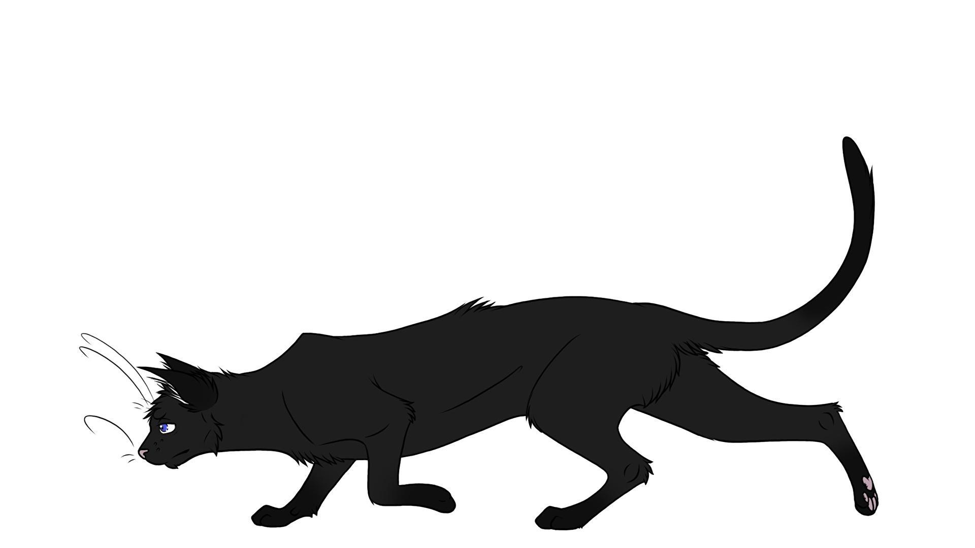Фотография коты силуэта Kuroi-Hitsuji животное Белый фон Черный фон 1920x1080 кот Кошки кошка Силуэт силуэты Животные белом фоне белым фоном на черном фоне
