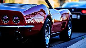 Обои Chevrolet Темно красный Металлик Сзади Фар Corvette C3 Машины