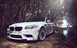 Картинка BMW Белых Фар m5 f10 автомобиль